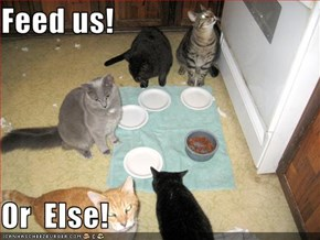 Feed us!  Or  Else!