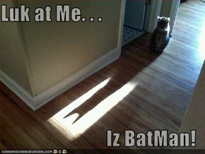 Luk at Me. . .   Iz BatMan!
