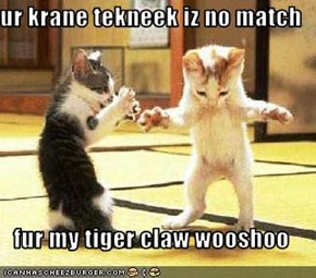 ur krane tekneek iz no match  fur my tiger claw wooshoo