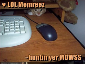 ♥ LOL Memreez  ~huntin yer MOWSS