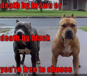 death by brown or death by black you're free to choose