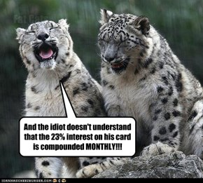 And the idiot doesn't understand that the 23% interest on his card is compounded MONTHLY!!!