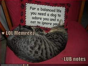 ♥ LOL Memreez ~LUB notes