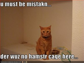 u must be mistakn...  der wuz no hamstr cage here...
