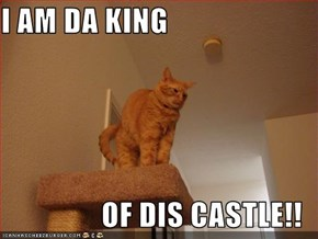 I AM DA KING  OF DIS CASTLE!!