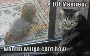 ♥ LOL Memreez  ~wontin wutya cant havz