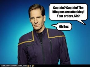 Captain? Captain! The Klingons are attacking! Your orders, Sir?