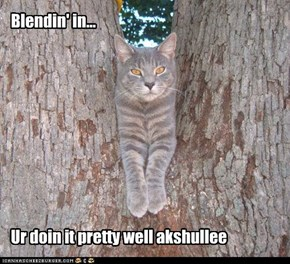 Blendin' in...