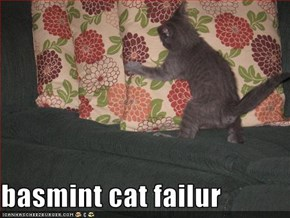 basmint cat failur