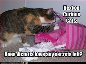 Does Victoria have any secrets left?