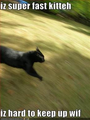 iz super fast kitteh  iz hard to keep up wif