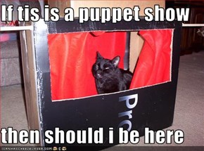 If tis is a puppet show  then should i be here