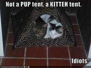 Not a PUP tent, a KITTEH tent.  Idiots.