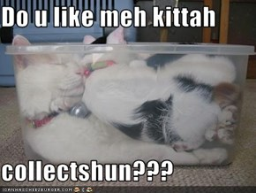 Do u like meh kittah   collectshun???