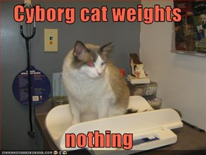 Cyborg cat weights   nothing