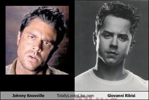 Johnny Knoxville Totally Looks Like Giovanni Ribisi