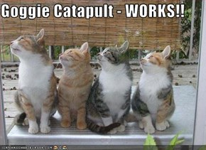 Goggie Catapult - WORKS!!