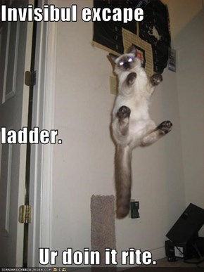 Invisibul excape ladder. Ur doin it rite.