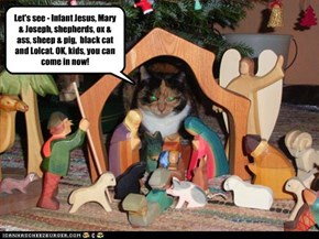 Let's see - Infant Jesus, Mary & Joseph, shepherds, ox & ass, sheep & pig,  black cat and Lolcat. OK, kids, you can come in now!