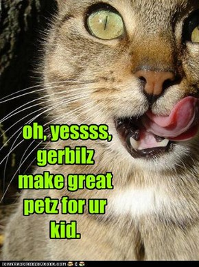 oh, yessss, gerbilz make great petz for ur kid.
