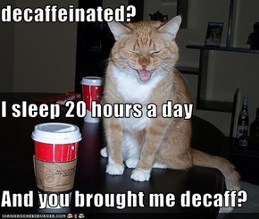 decaffeinated? I sleep 20 hours a day And you brought me decaff?