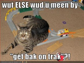 "wut ELSE wud u meen by  ""get bak on trak""?!"