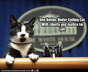 One Nation, Under Ceiling Cat, With Liberty and Justice for Lolz