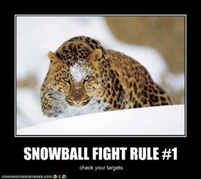 SNOWBALL FIGHT RULE #1