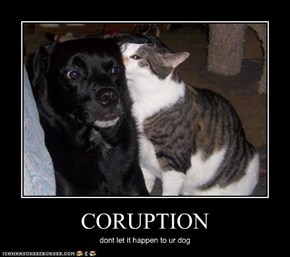 CORUPTION