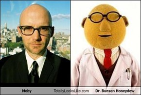Moby Totally Looks Like Dr. Bunsen Honeydew