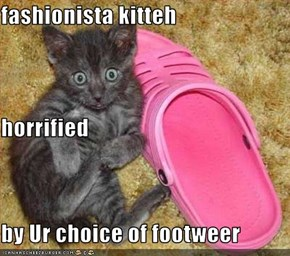 fashionista kitteh horrified by Ur choice of footweer