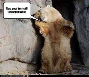 Drama bear iz damatic!
