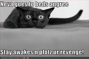 Neva goes to beds angree  Stay awakes n plotz ur revenge!
