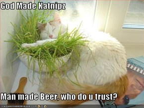 God Made Katnipz  Man made Beer, who do u trust?