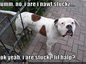 umm. no, i are i nawt stuckz....  ok yeah, i are stuckz. lil halp?