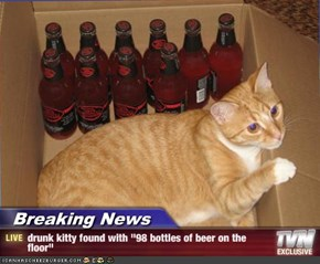 "Breaking News - drunk kitty found with ""98 bottles of beer on the floor"""