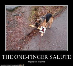 THE ONE-FINGER SALUTE