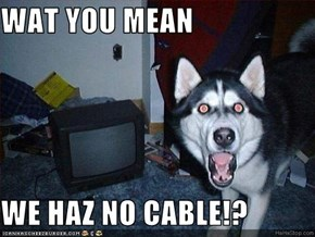 WAT YOU MEAN  WE HAZ NO CABLE!?