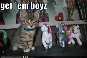 get `em boyz