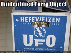 Unidentified Furry Object