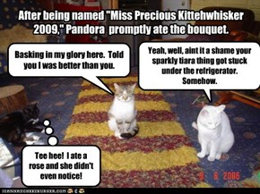 "After being named ""Miss Precious Kittehwhisker 2009,"" Pandora  promptly ate the bouquet."