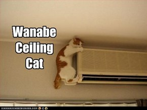 Wanabe Ceiling Cat