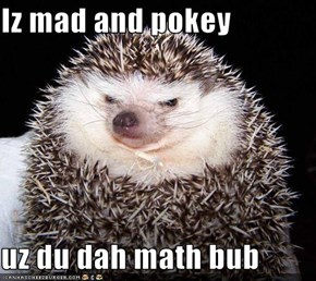Iz mad and pokey  uz du dah math bub
