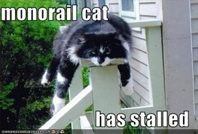 monorail cat  has stalled