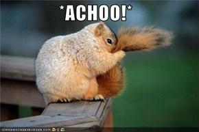 *ACHOO!*