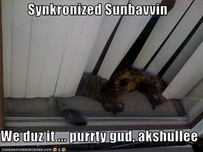 Synkronized Sunbavvin  We duz it ... purrty gud, akshullee