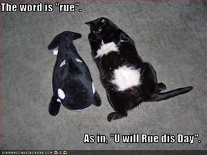 "The word is ""rue"".   As in, ""U will Rue dis Day""."