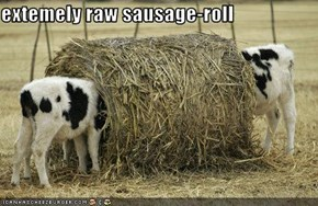 extemely raw sausage-roll