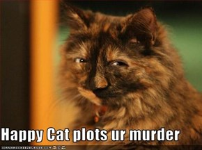 Happy Cat plots ur murder
