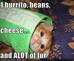 1 burrito, beans, cheese.... and ALOT of fur